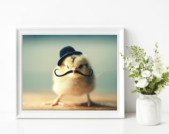Chicken Art Photo Wearing A Derby Hat Mustache Photograph Chicks in Hats Print 8x10
