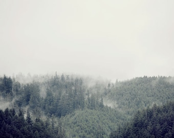 """Mountain Photography Print, Landscape Photography, Foggy Forest Print, Nature Photography, Large Wall Art Tree Print """"Distant Dream"""""""