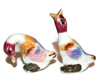 Salt and Pepper Shakers Colorful Ducks