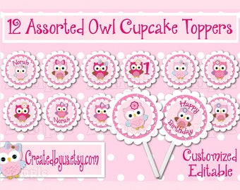 Owl Cupcake Toppers  Girl owl Birthday party Decorations Custom owl favors cupcake picks topper cupcake top Owl party decor 12 assembled