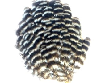 Back White Grizzly Striped FEATHER PAD for crafting or fly tying Rooster feathers