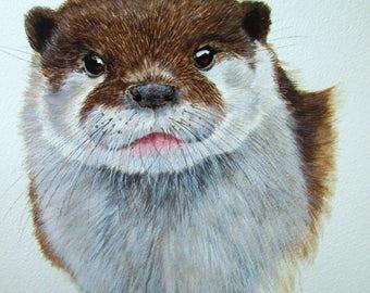 ORIGINAL watercolour of a European Otter by Josephine Bell
