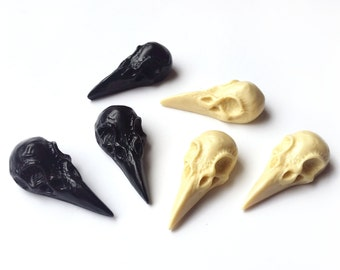 6 x Small Skull Blanks