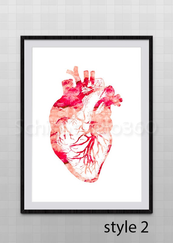 Heart Anatomy Watercolor Art Print Heart Anatomy Poster