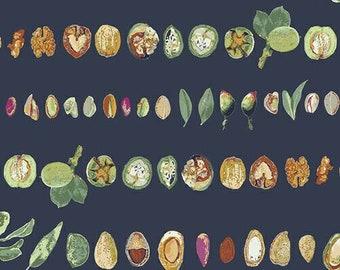 Nut Medley - Art Gallery Fabric - Mediterraneo byKatarina Roccella - Fruits and Nuts Fabric - Mediterranean Fabric