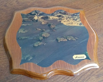 Hawaii Wood Photo Plaque made by Habilitat