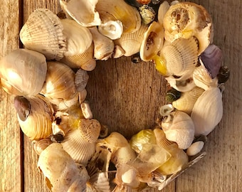 Sea Shell Wreath with Crab Claw Bow 8.5 Inches Made with Cape Cod Shells Coastal Christmas Beach Holiday Ocean Cottage Decor