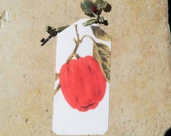 Bookmark, red pepper, grape leaf charm