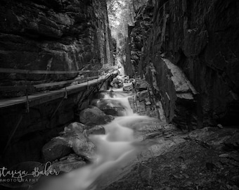 ALUMINUM METAL Photography Print of the Flume Gorge in Lincoln New Hampshire in Black and White