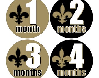 12 Monthly Baby Milestone Waterproof Glossy Stickers - Fleur de Lis - New Orleans Louisiana - Design M027-01