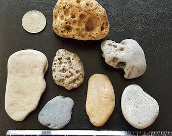7 Small/Medium Beach Stones with Holey Stone / Hag Stone
