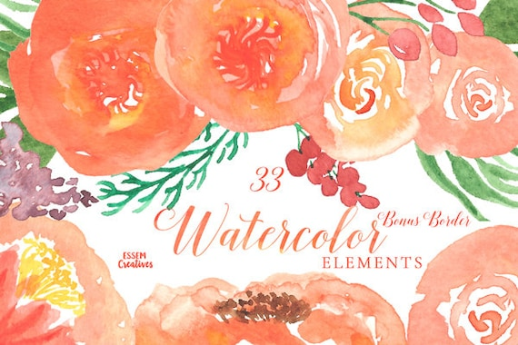 Orange Watercolor Flowers Clipart Coral Garden Roses