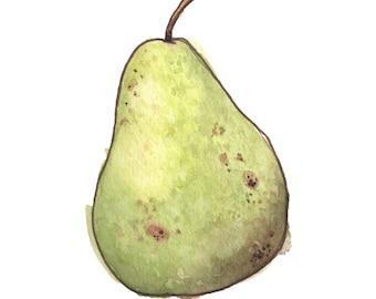 Pear (8x10)