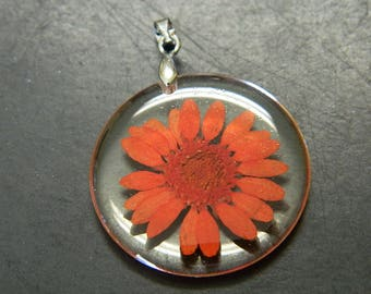 Orange Dried Flower In Clear Flat Round Resin Drop Pendant - Dried Flower Resin Medallion Pendant - Real Orange Flowers