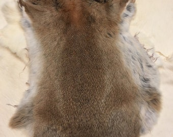 Real Rabbit Fur Pelt Animal Hide Tanned Leather Taxidermy Canadian Small Farms