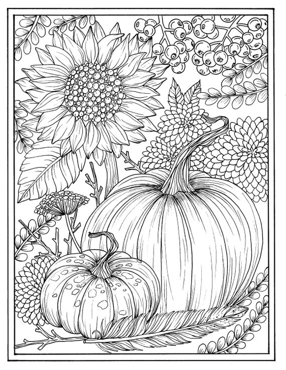 free autumn coloring pages for adults | Fall flowers and pumpkins digital coloring page Thanksgiving