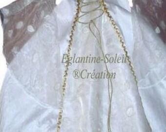 Medieval princess dress in silk and sheer.