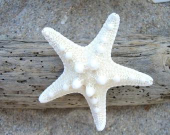 Starfish Hair Barrette-Large Starfish Hair-Mermaid Costumes, Beach Weddings,Starfish Weddings, Coastal Seashore Chic