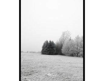 winter wonderland - 50x70/A1 Artprint - Poster