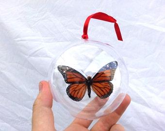 Real naranja mariposa Monarca Danaus Plexippus Navidad adorno bola globo redondo de regalo