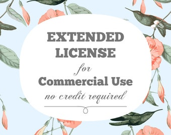 No Credit Required Extended License for One Product