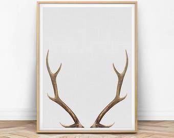 Deer Antler Print, Deer Wall Art, Antler Print, Deer Photo, Deer Antler Printable, Digital Download, Modern Wall Art, Animal Print, Wall Art