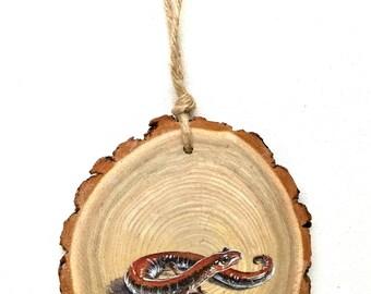 Salamander Wood Tree Slice Wall Art