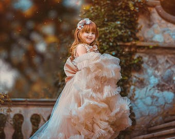 Photoshoot gown dress flowergirl ruffled tulle photo props flower girl dress pageant photography festive gown dress Tutu