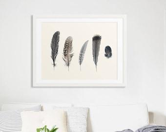 Grande plume tirages / / grand plume Art mural / neutre Large Print / / Art mural minimaliste imprime / / grande plume impressions - Collection 2