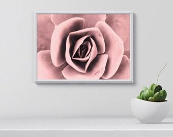 Pink flower wall art, Flower Print, Tropical Pink Poster, Art Print, Home Decor, Christmas gift, gift for her, gardener gift, Printable