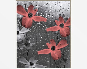 Coral Gray Bathroom Decor, Coral Flowers Raindrops, Powder Room Coral Home Decor Matted Picture
