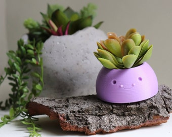 Happy Planter, Succulent Planter, Air Planter Many Colors