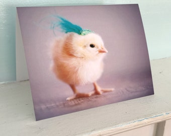 Greeting Card Chicks in Hats Photo Card Chicken Wearing A Miniature Fascinator Baby Animals #69