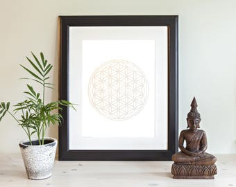 The Flower of Life Meditation tool