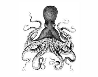 Octopus Nautical Vintage Style Art Print Black and White Grey Beach House Decor