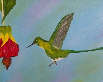 "Hummingbird Oil Painting, Bird Painting, Hummingbirds, Birds, Violet, Sylph, Original Oil Painting - ""Violet-tailed Sylph"" (8"" x 16"")"