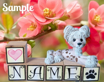 Chinese Crested dog PERSONALIZED with your dog's name on blocks by Sally's Bits of Clay