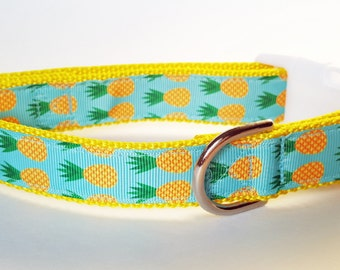Pineapple Dog Collar / Summer Dog Collar