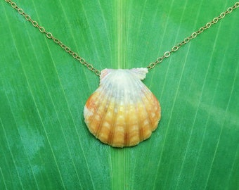 Pretty pastel yellow and grey sunrise shell necklace