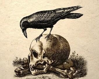 Crow and Skull Fabric Block Quilt Print Applique