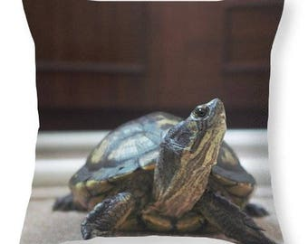 yellow belly turtle pillow