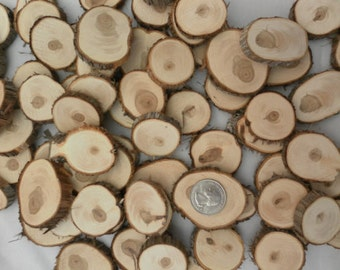 100 Wood Slices ~ 1.25 to 2 inch ~ Tree Slice Assortment, Craft Disks, Table Confetti, Mosaic Pieces, Vase Filler, Wood Slice Mix