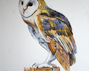 Original bird art Owl watercolor painting Original wall decor Brown blue bird Large watercolor art Zoological illustration Bar owl Art