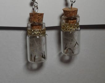 Dandelion seeds earings in a bottle