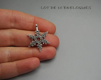 SET of 10 silver snowflake (D79) charms