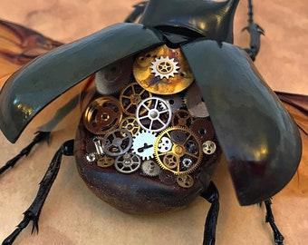 Steampunk Clockwork Atlas Beetle