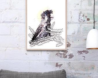 NEW Carnaby Black Cockatoo Bird Art Print A3, A2 & A1 Bird Watercolour Illustration giclee Art Print