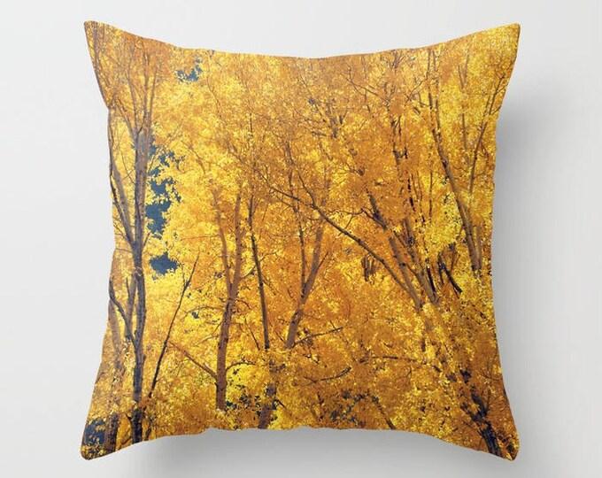 Preferred Throw Pillows - RDelean SP34