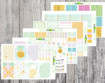 Fineapple Weekly Kit for Erin Condren