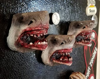Jaws magnets